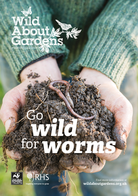 Go wild for worms
